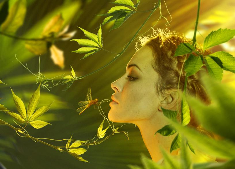 New Spirit & Trance Übungszirkel (3-Tage) - Training der Hellsinne, Medialität und Sensitivität